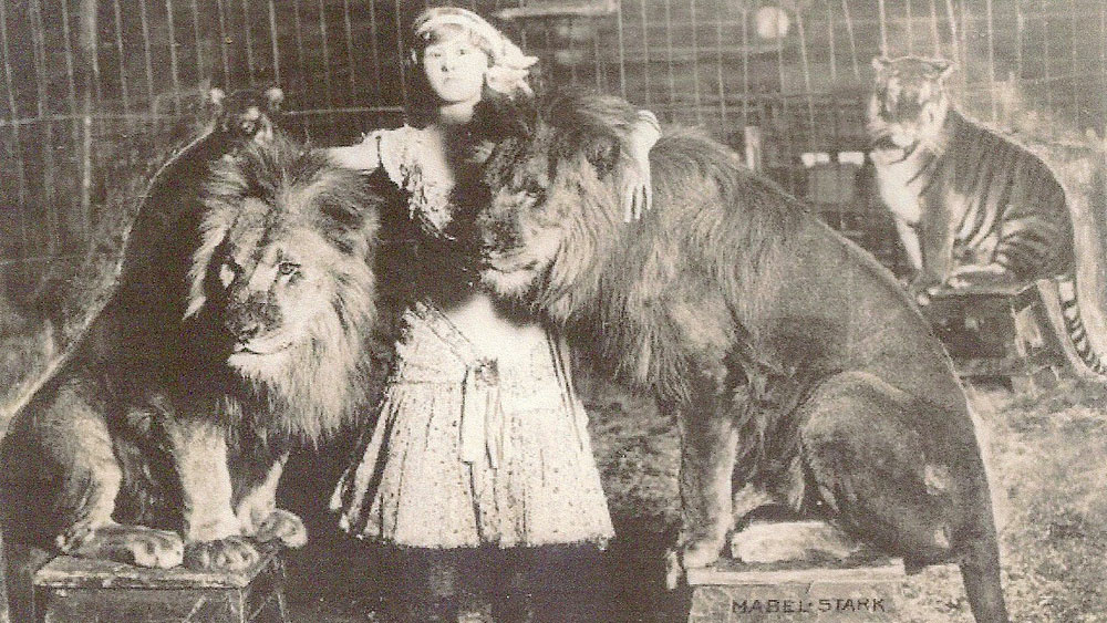 Mabel Stark at the beginning of her career, with lions.
