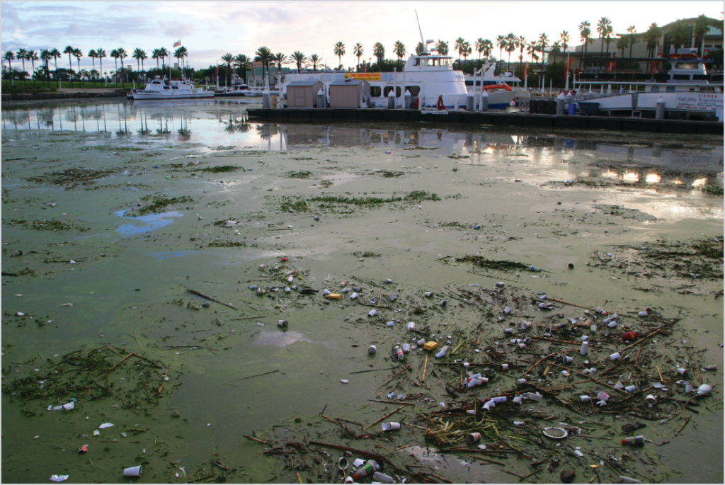 Plastic trash is seen floating on the water at Rainbow Harbor in Long Beach.