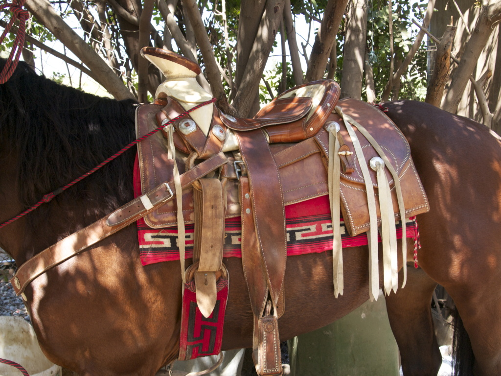 mexican cowboys hold on to their rural  u0026 39 vaquero