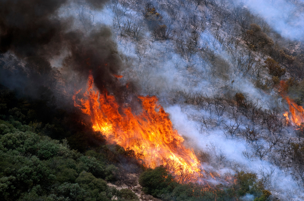The fire burned power lines and a Department of Water and Power hydroelectric plant near San Francisquito Canyon Road.