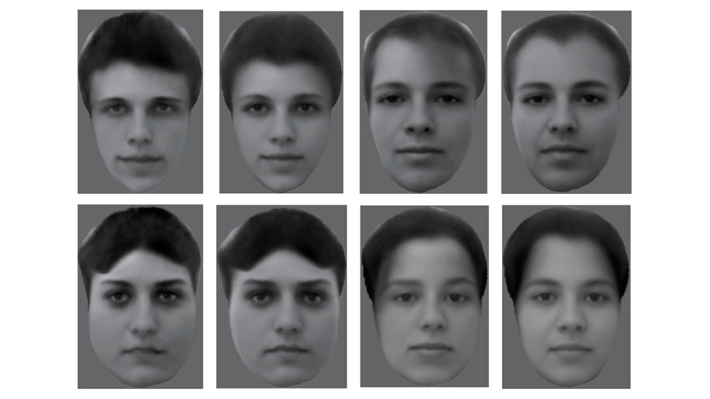 Eight different real faces were shown to a monkey. The images were then reconstructed using analyzing electrical activity from 205 neurons recorded while the monkey was viewing the faces.