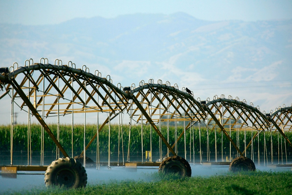 A crop sprinkler brings water to a field as drought conditions worsen near Bakersfield, California.