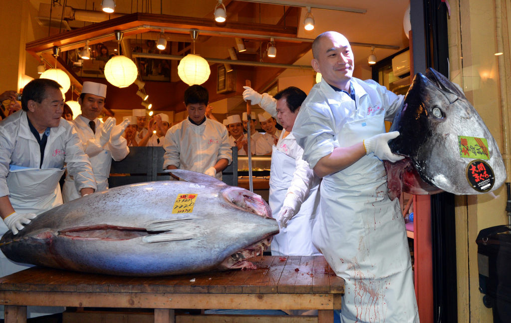 An employee (R) of sushi restaurant chain Sushi-Zanmai shows the head of a 222-kg (488-pound) bluefin tuna purchased for a record price which will be sliced up for customers at the main restaurant of the chain near Tokyo's Tsukiji fish market on January 5, 2013. The 222-kg bluefin tuna was traded at 155.4 million yen (appx. 1.8 million USD) at the wholesale market earlier in the day, nearly three times the previous high set last year.