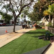 Drought tolerant lawn LADWP