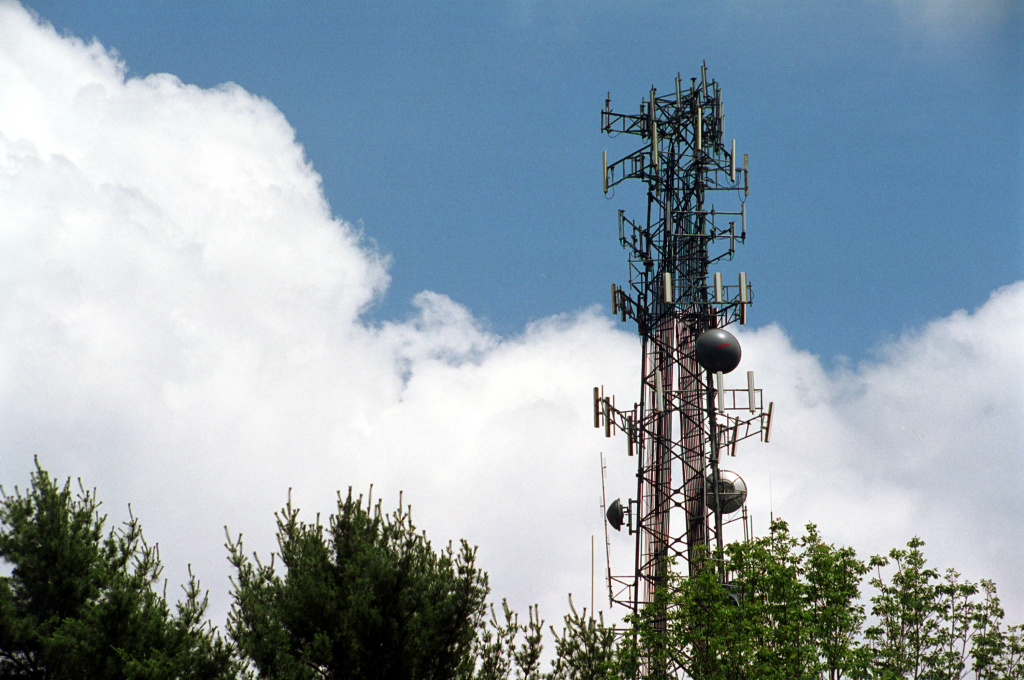 A cell phone tower rises above the trees June 25, 2001 in Sudbury, Massachusetts.