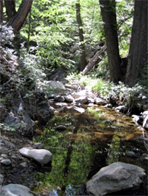 Hiking in Little Rock Creek, in the Angeles National Forest, may no longer require an Adventure Pass.