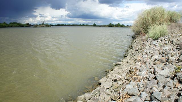 A levee in the Sacramento-San Joaquin Delta.