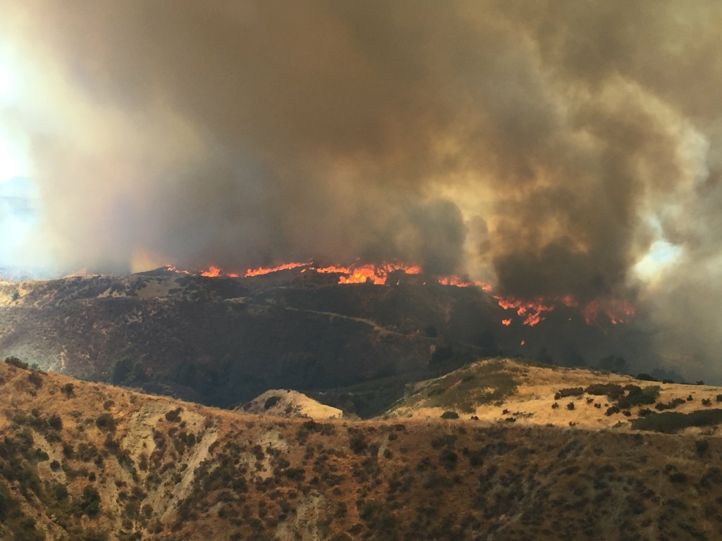Jarrod Anthony Samra is suspected of starting eight different wildfires. Several wildfires of various origins have been blazing throughout Southern California in recent months. Here, the Placerita Fire burns in the Santa Clarita Valley on Sunday, June 25, 2017.