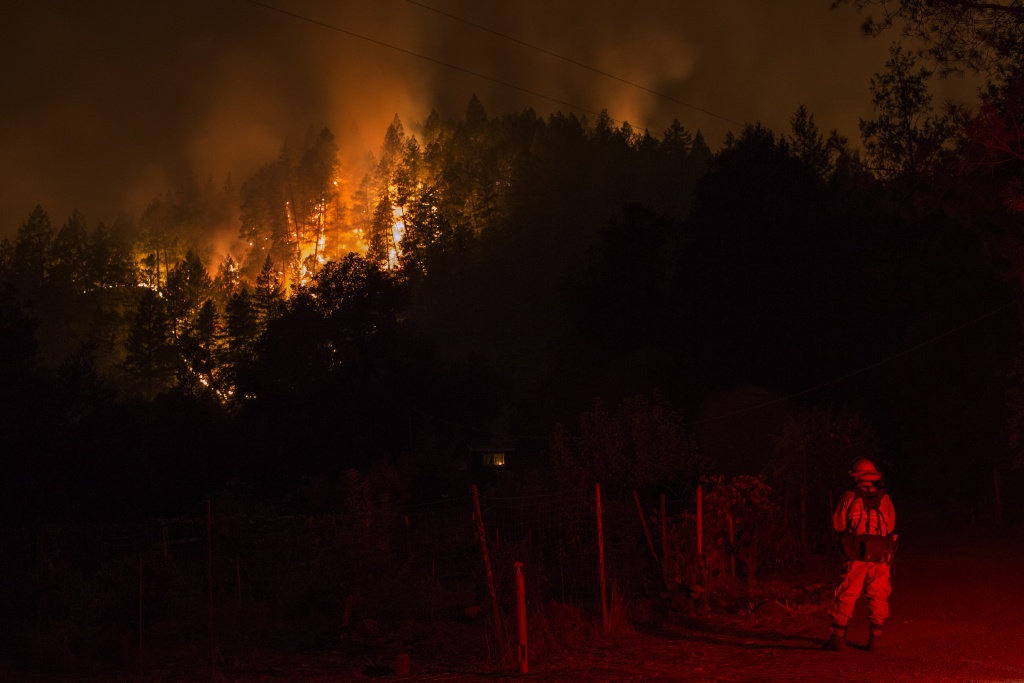 Wildfire creeps through the forest, down the south side of Dry Creek Canyon, at the Partrick Fire in Napa County. It would take three weeks to contain the North Bay fires.