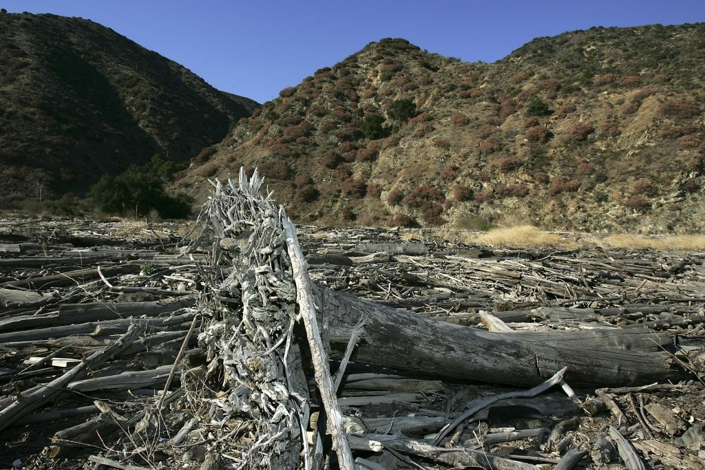 Record High Temperatures Exacerbate Drought as Strange Weather Plagues Los Angeles County