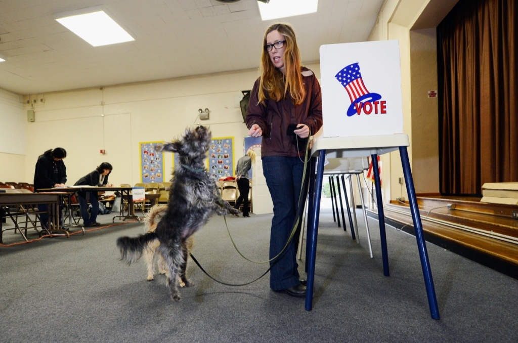 Anna Donlin gives a treat to her dogs Pearl (L) and Walnut after she cast her ballot at Allesandro Elementary School on March 5, 2013 in the Boyle Heights area of Los Angeles.