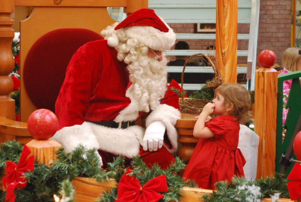 Tis the season for visiting Santa at your local mall.