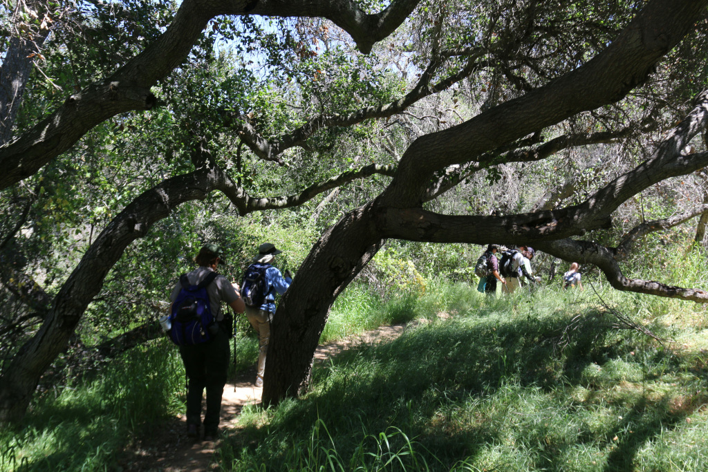 Hikers enjoy the Backbone Trail near Topanga Meadows in the Santa Monica Mountains National Recreation Area.