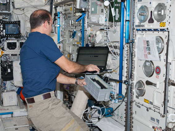 Flight Engineer Rick Mastracchio on in the International Space Station's Columbus lab last month.