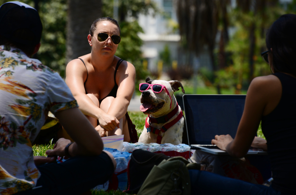 San Diego Temperatures To Climb As Heat Wave Sets In