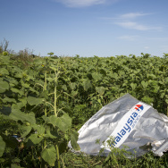 298 Crew And Passengers Perish On Flight MH17 After Suspected Missile Attack In Ukraine
