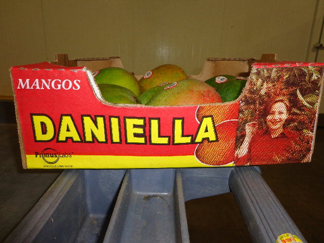 Splendid Products voluntarily recalled certain Daniella Brand mangos in August 2012