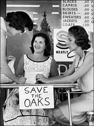 Fifty years ago, if you had an issue you wanted to fight for, you set up a card table and asked people for signatures on a petition, like the Chatsworth Junior Women's Club did to save oak trees in 1964. Today, the petitions are online - but are they more convincing?