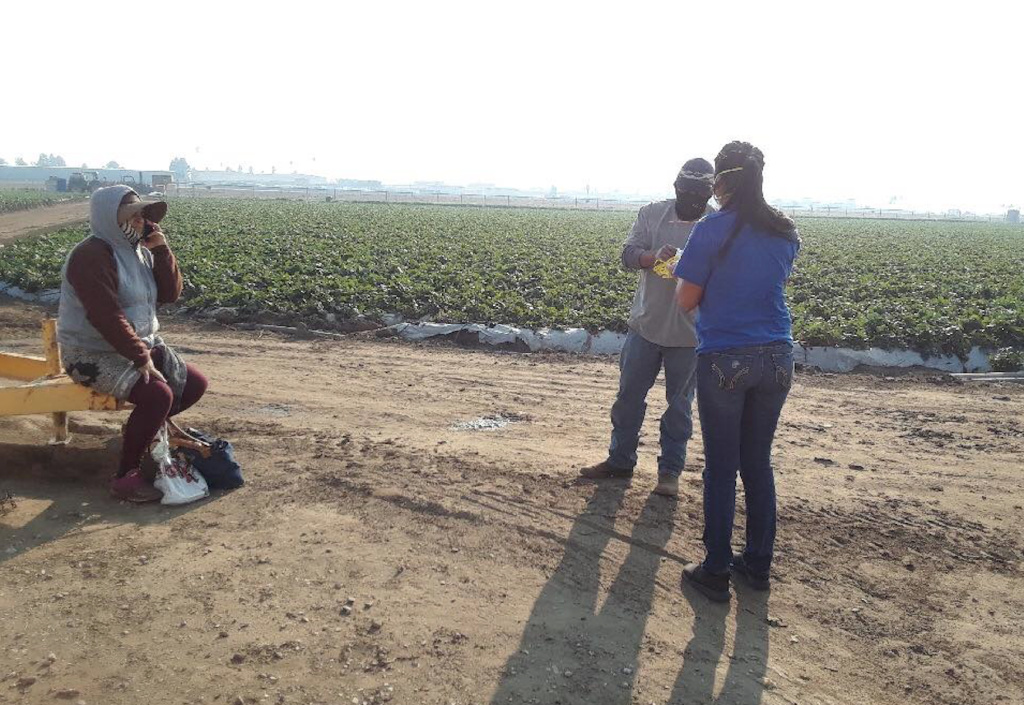 A volunteer with the advocacy group Central Coast Alliance United for a Sustainable Economy speaks with farm workers in a field near Oxnard in Ventura County last week while distributing face masks. Farm worker advocates say some field hands worked without protective masks despite the ash and smoke from the Thomas Fire.