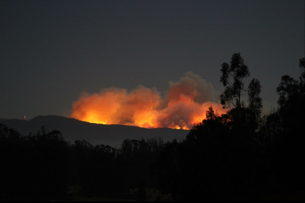 The Canyon Fire started burning on Sept. 17 in the canyon between Arguello and Santa Ynez Roads.