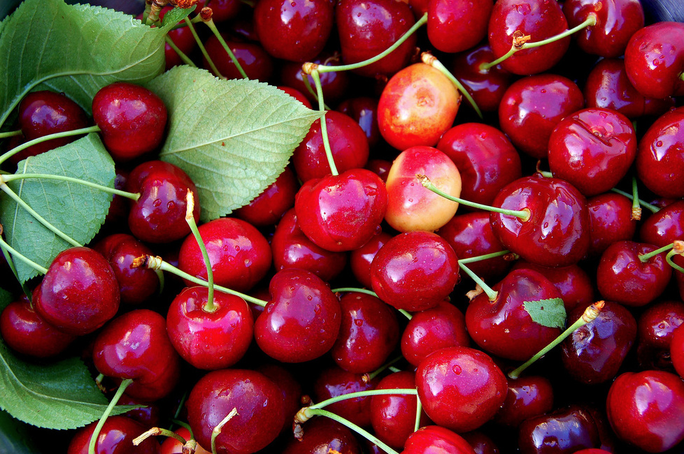 California cherries.