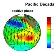 An image showing the positive / warm phase of a PDO and the negative / cold phase. The terms warm and cold refer to the temperature of water off the west coast of America.