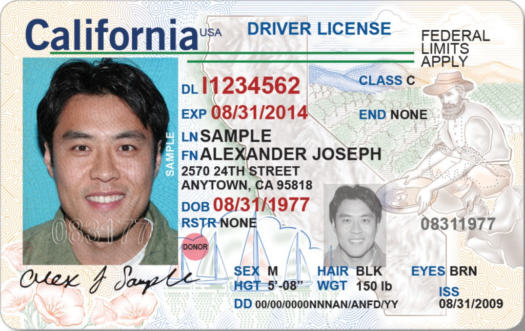new drivers license california for travel