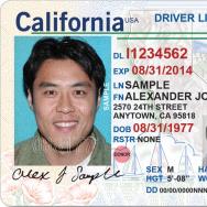 california drivers license renewal