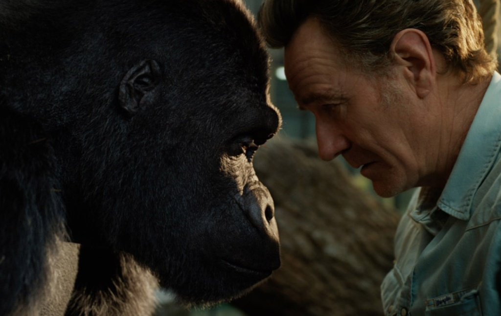 Sam Rockwell (L) voicing Ivan the gorilla and Bryan Cranston (R) in