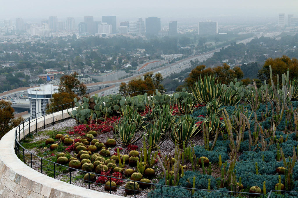 Catcus garden at the Getty Museum (Creative Commons via Flickr user Prayitno)