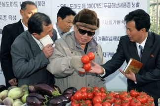 This undated photo released by North Korea's official Korean Central News Agency this month via the Tokyo-based Korean News Service (KNS) shows North Korean leader Kim Jong Il inspecting the Pyongyang Vegetable Science Institute in Pyongyang. North Korea's future seems uncertain after Kim's death.