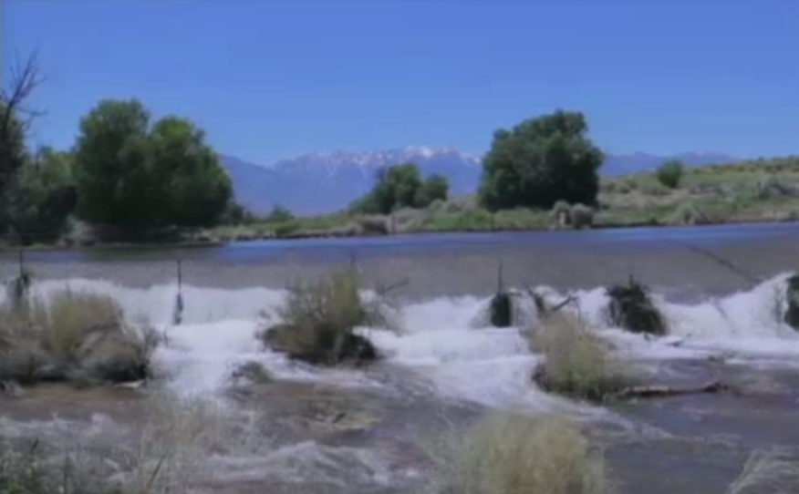 The Owens River flooding in June 2017 at the peak of the Sierra snowmelt.