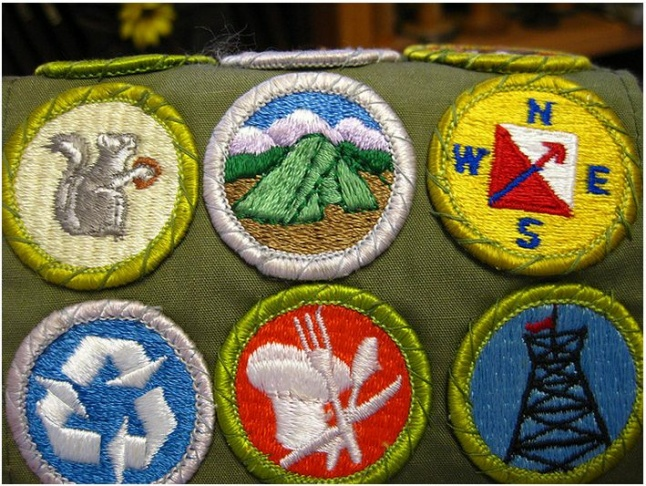 BOY SCOUTS BADGES