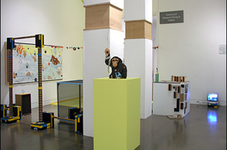 Scoli Acosta's installation at OCMA's 2006 Biennial: Imperfect Empathetic Sta.