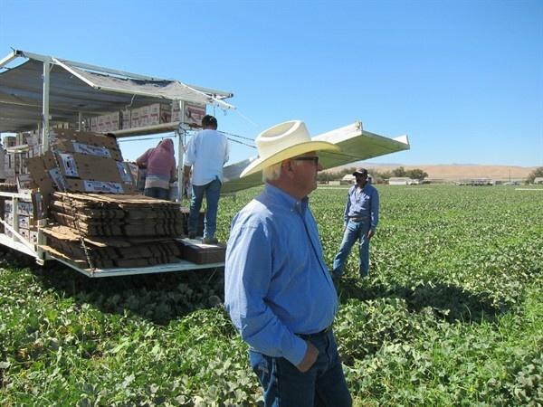 Farm Delta