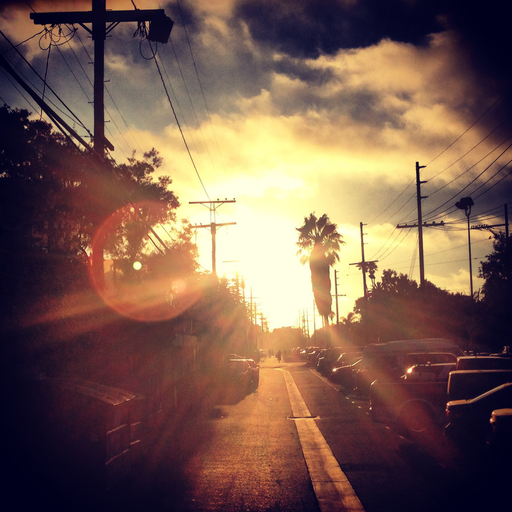 Sunset Behind Abbot Kinney - Venice Beach, California