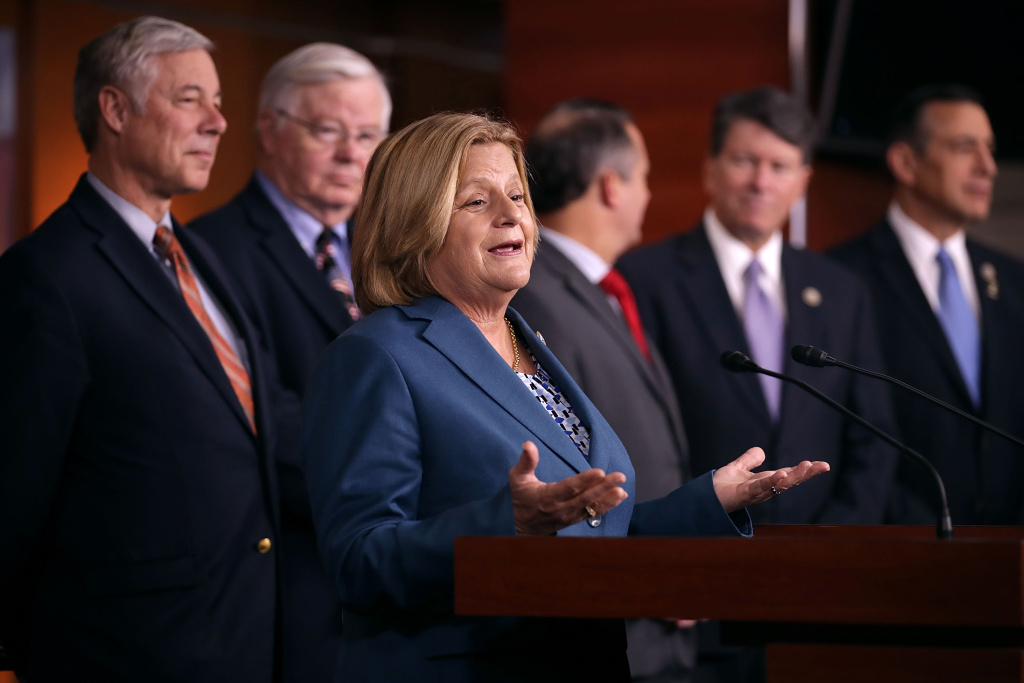 Rep. Ileana Ros-Lehtinen (R-FL) is joined by more than a dozen Republican members of Congress as she speaks during a news conference about the Deferred Action for Childhood Arrivals (DACA) program at the U.S. Capitol November 9, 2017 in Washington, DC.