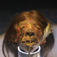 An Ecuadorian shrunken human head from t