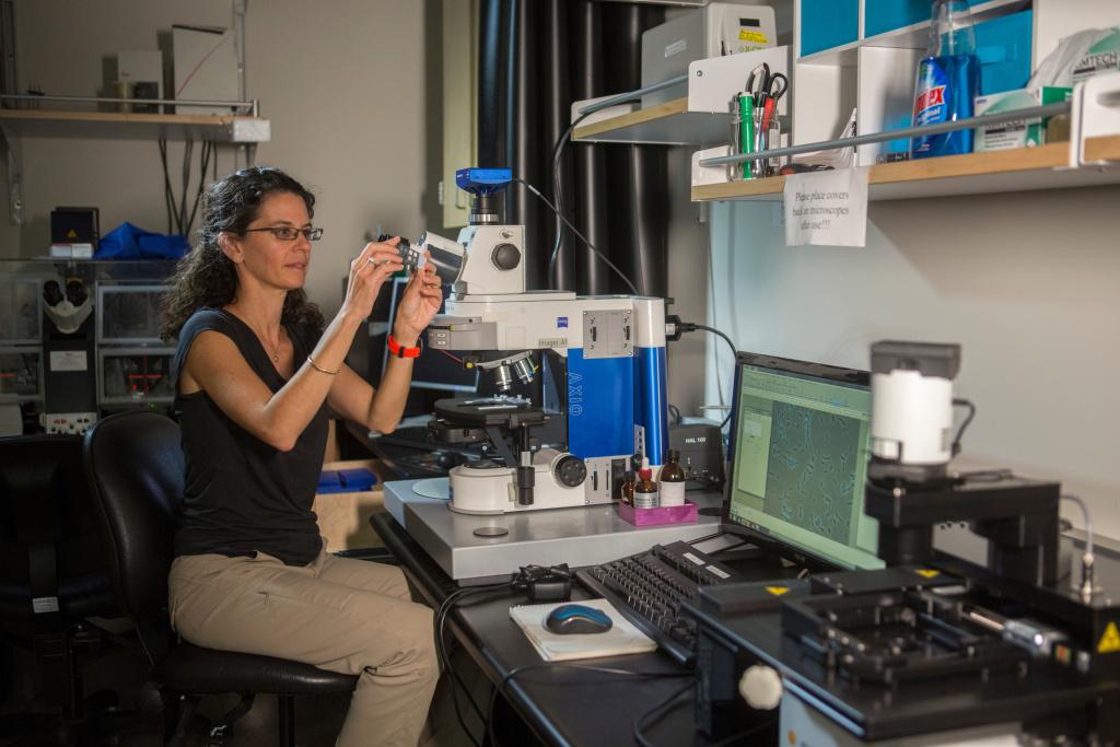 Dianne Newman, 2016 MacArthur Fellow, Caltech, Pasadena, California.
