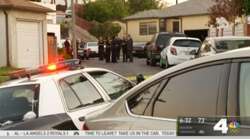 Police pursuit of a stolen vehicle ended when officers shot and killed the passenger and arrested the driver in Boyle Heights on Thursday evening, according to the Los Angeles Police Department.