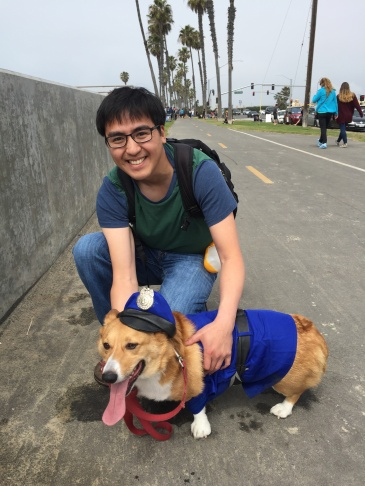 Rick Garcia organized a five-dog team that went on to win best tiki costume. The pooches include his corgis Reed, Riley and Roi as well as his non-Corgi, Ringo. His friend's corgi Coco rounded out the group.