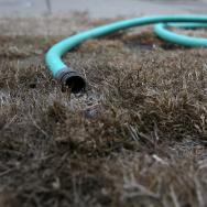 A hose sits on a dead lawn in front of a house on July 15, 2014 in San Francisco, California. As the California drought continues to worsen and voluntary conservation is falling well below the suggested 20 percent, the California Water Resources Control Board is considering a $500 per day fine for residents who waste water on landscaping, hosing down sidewalks and car washing.  (Photo by Justin Sullivan/Getty Images)
