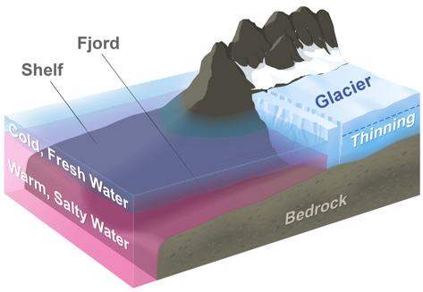 The diagram above represents a typical glacier in Greenland. Below the cold, fresh layer near the surface a layer of warm, salty water reaches into the fjords to melt the glacier's edge.