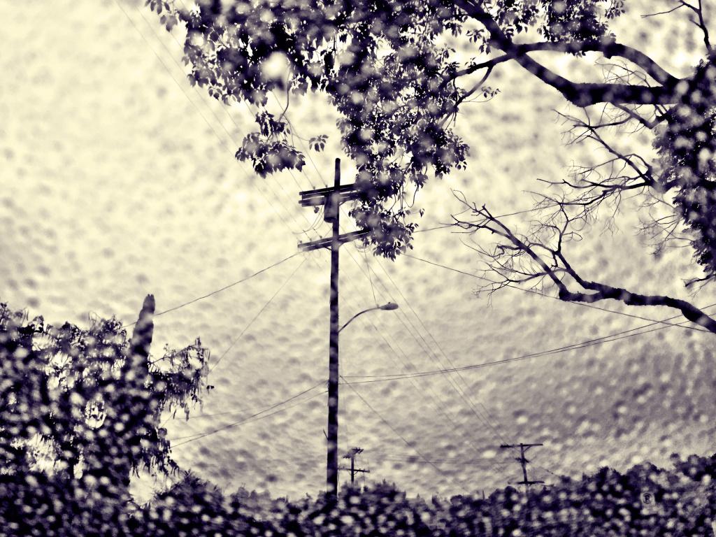 Rain through the windshield in L.A.'s Cypress Park neighborhood.