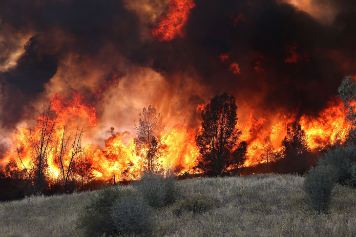 In this file photo, flames from a backfire operation burns through a grove of trees as firefighters try to head off the Rocky Fire on August 3, 2015 near Clearlake, California. The Rocky Fire was 85 percent contained on Monday morning, August 10, 2015, but a new fire that erupted nearby has forced some residents to evacuate again, and the two fires could eventually merge, fire officials say.