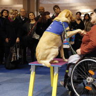 FRANCE-LIFESTYLE-SERVICES-ELDERLY-DISABLED-FAIR