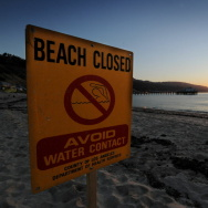 A beach closed sign warns against contam