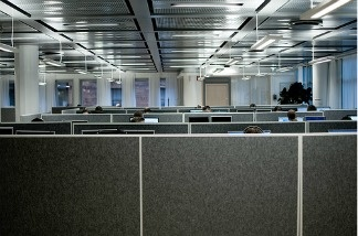 A row of cubicles in the workplace.