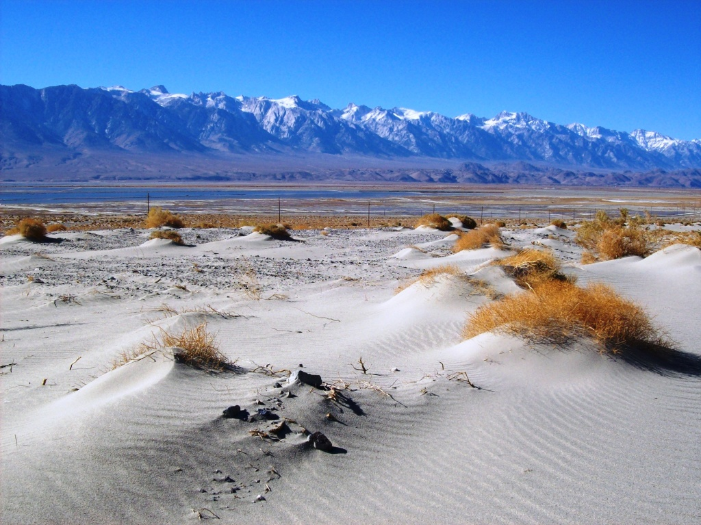 Sand dunes at the edge of Owens Lake.