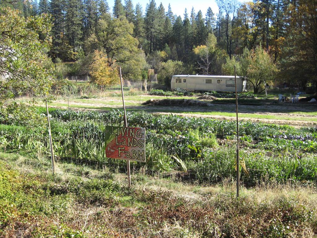 A local farm.